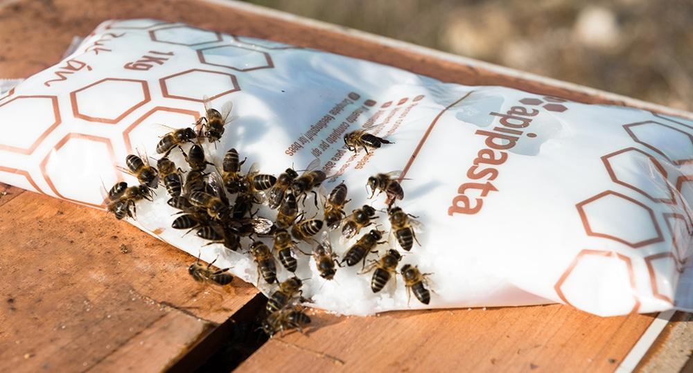 خمیر آپی پاستا(غذای آماده زنبور عسل)