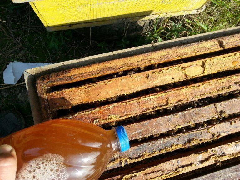 داروی ضد کنه واروا مارول (کنه زنبورعسل)