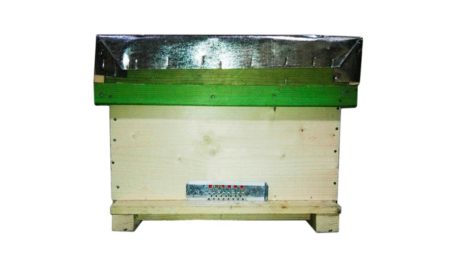 کندوی چوبی نراد روس(درجه ۱)