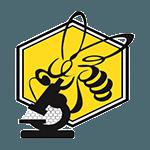 زنبور پژوه